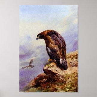 Eagle de oro poster