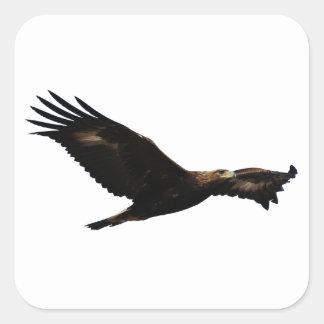 Eagle de oro calcomanías cuadradass personalizadas