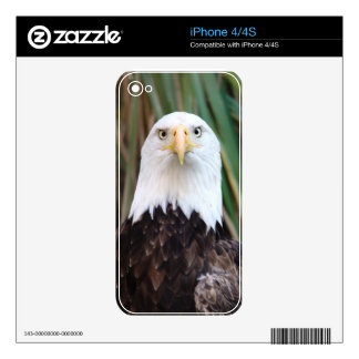 Eagle Decal For iPhone 4