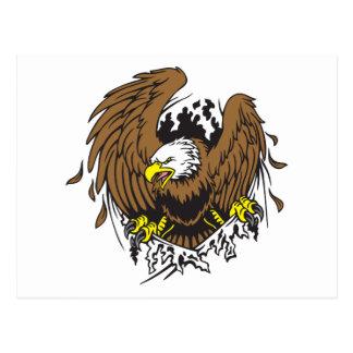 Eagle emergente tarjetas postales