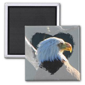 Eagle en la atención imán cuadrado