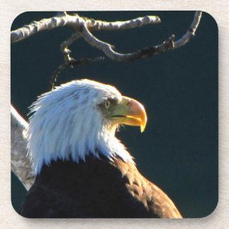 Eagle en la atención posavasos de bebida