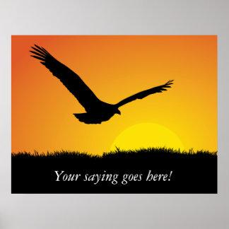Eagle en la puesta del sol - poster