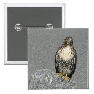 Eagle en la roca pin cuadrada 5 cm