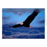 Eagle en vuelo felicitaciones
