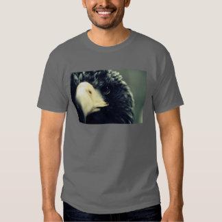 eagle eye (dark) t shirt