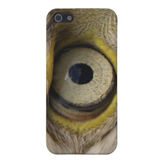 Eagle Eye iPhone Cases Cases For iPhone 5
