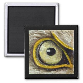 Eagle Eye Magnet