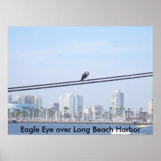 Eagle Eye Over Long Beach Harbor Poster