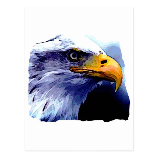 Eagle Eye Post Cards