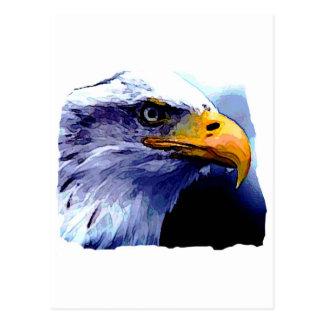 Eagle Eye Post Cards