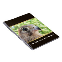 Eagle Eye Spiral Notebook