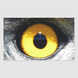 Eagle Eye Rectangle Sticker