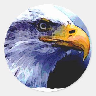Eagle Eye Round Sticker