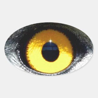 Eagle Eye Oval Sticker