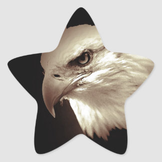 Eagle Eyes Stickers