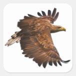 Eagle fijado en vuelo de pegatinas cuadrados pegatinas cuadradases personalizadas