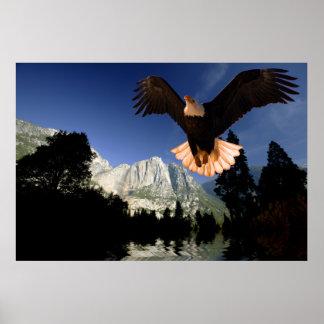 Eagle-flight-11 Poster