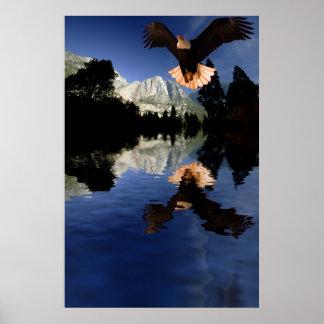 Eagle-flight-12 Poster