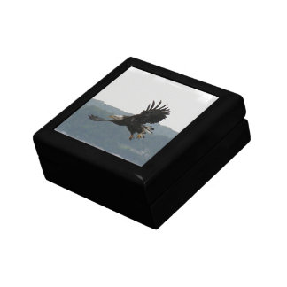 Eagle Flight Gift Box