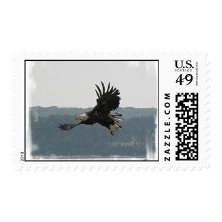 Eagle Flight Postage Stamp