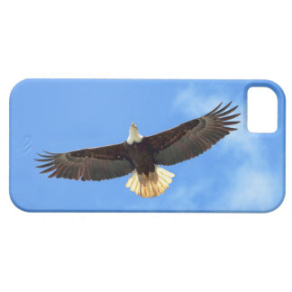 Eagle Flying iPhone 5 Cases
