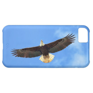 Eagle Flying Cover For iPhone 5C