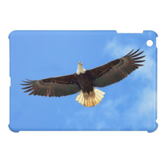 Eagle Flying Case For The iPad Mini