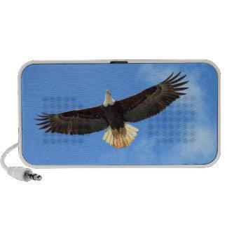 Eagle Flying Portable Speakers