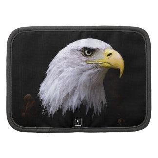 Eagle Organizador