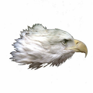 Eagle Fotoescultura Vertical