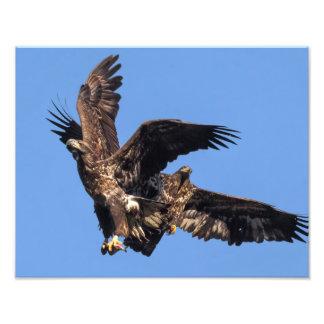Eagle Games Photo Print