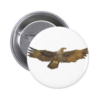 Eagle Golden Eagle Bald Eagle Buttons