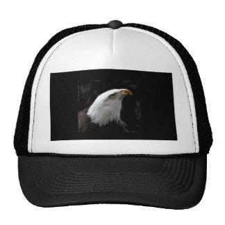 Eagle Hats
