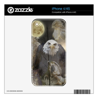 Eagle, Hawks, Falcons & Moon iPhone 4 Skin