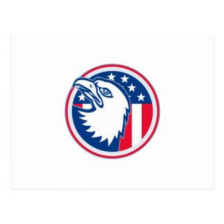 eagle head american stars stripes flag postcard