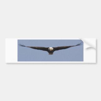 Eagle head-on color bumper stickers