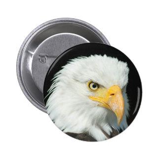 Eagle head pinback button