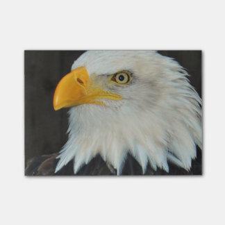 Eagle Head Post-it® Notes