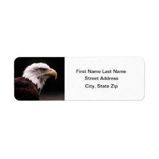 Eagle Head Study Custom Return Address Labels