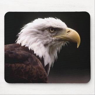Eagle Head Study Mouse Pad