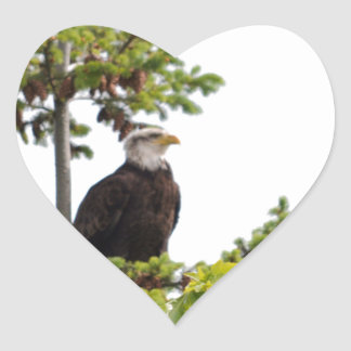 Eagle in a Tree Heart Sticker