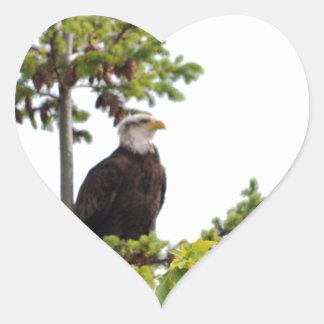 Eagle in a Tree Heart Sticker