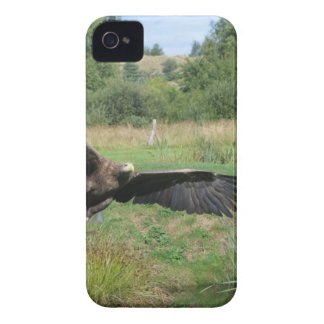 Eagle_In_Flight_2004-09-01 iPhone 4 Cover