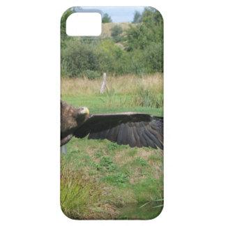 Eagle_In_Flight_2004-09-01 iPhone SE/5/5s Case