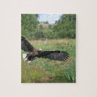 Eagle_In_Flight_2004-09-01 Puzzle