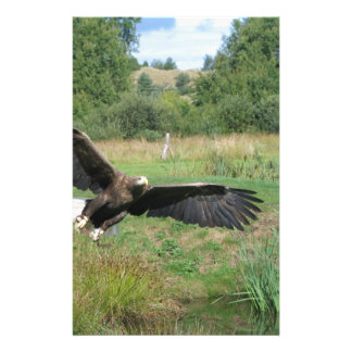Eagle_In_Flight_2004-09-01 Stationery