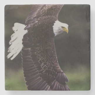 Eagle in flight stone coaster