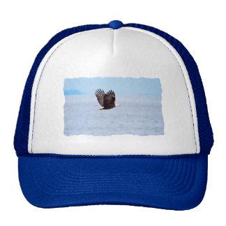 Eagle in Flight Trucker Hat