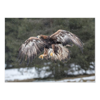 Eagle in Snow Card